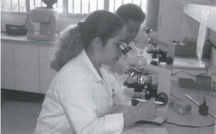Brazilian Public Health Systems