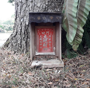 Photo of a small, empty altar at the base of a tree