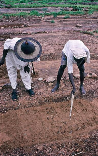 Two men examining animal tracks in the dirt