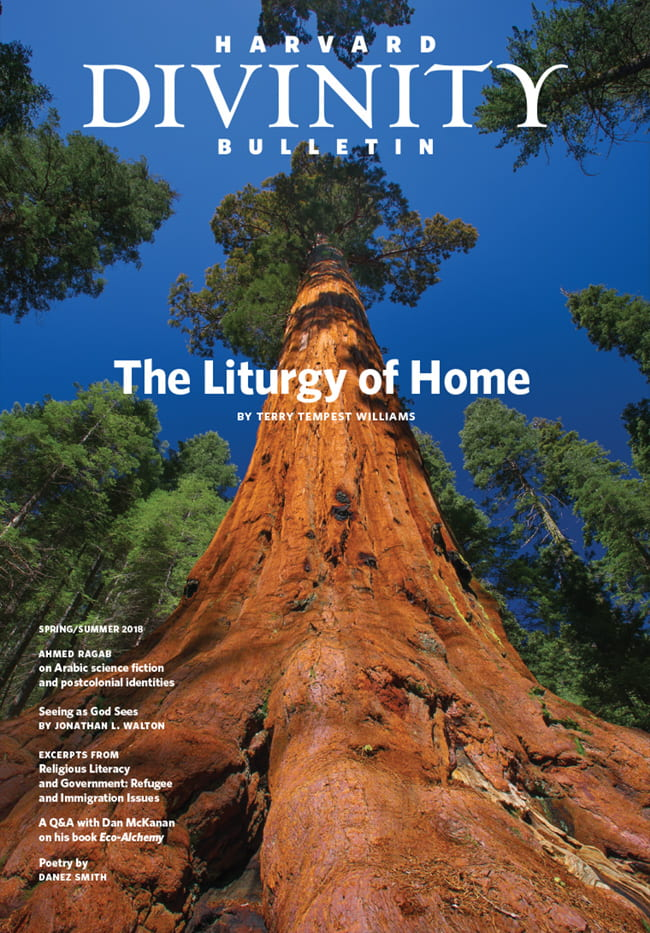"""Spring/Summer 2018 issue, featuring """"The Liturgy of Home"""" by Terry Tempest Williams"""