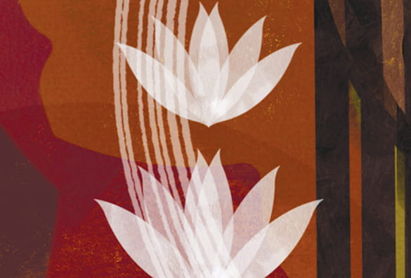 Illustration of two lotus flowers