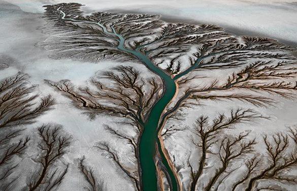 The Planet: An Emergent Matter of Spiritual Concern?