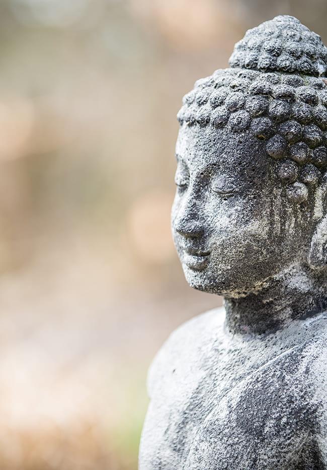 Stone Buddha figure with blurry background