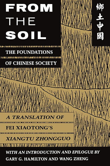 Book cover for From the Soil