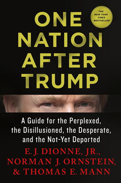 Book cover for One Nation After Trump