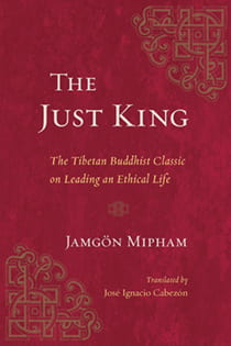Book cover of The Just King
