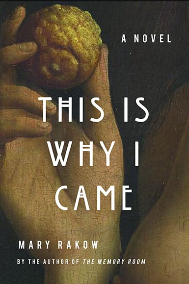 Book cover for This is Why I Came