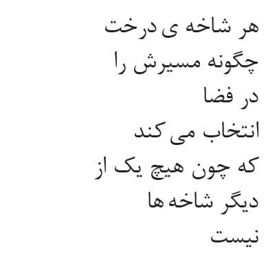 Poem written in Persian