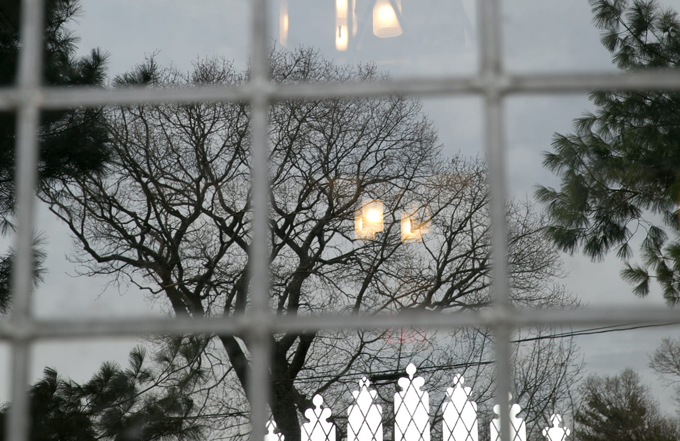 Photo of tree branches reflecting on a wondow with lights and another entrance shining through the window panes