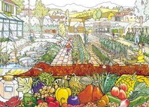 Disegno di orto sul balcone