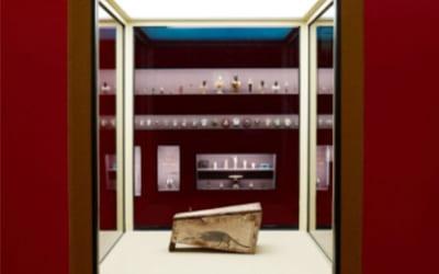 Il sarcofago del toporagno