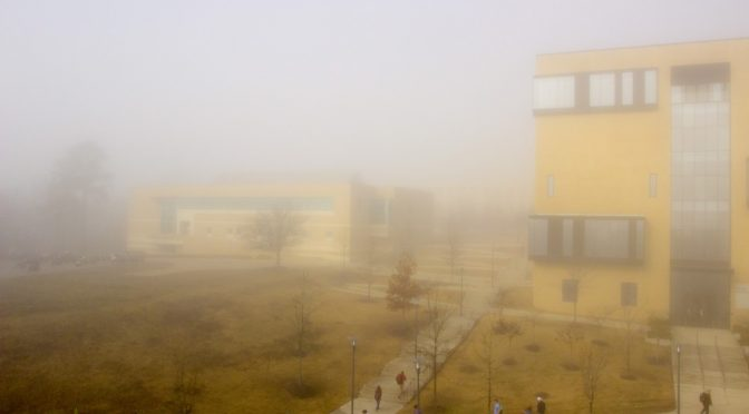 Foggy Day on the Hill