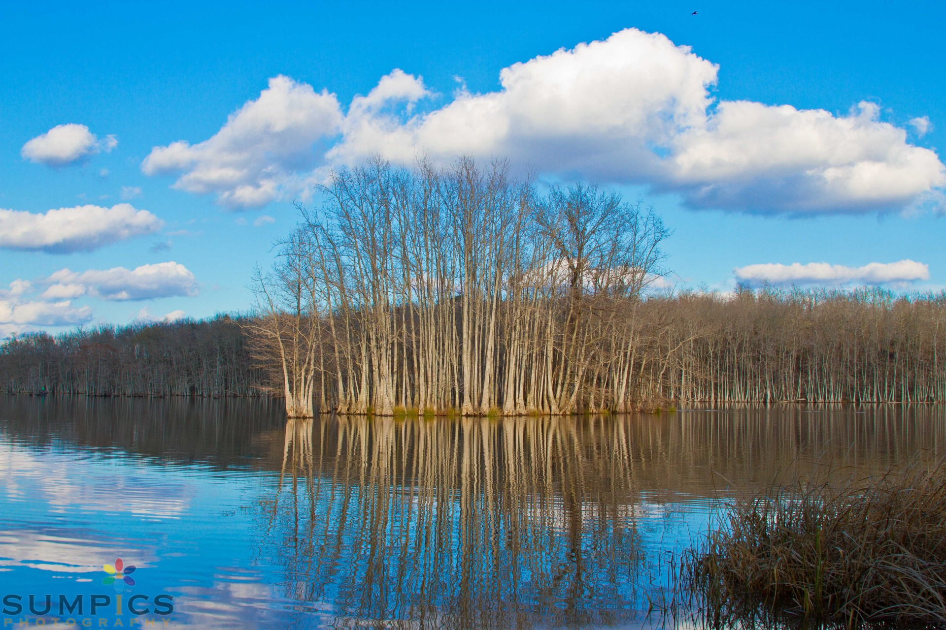 New Watershed Group to Develop Plan for Water Quality
