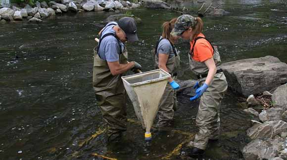 Water Science and Policy Fellowship Available with EPA