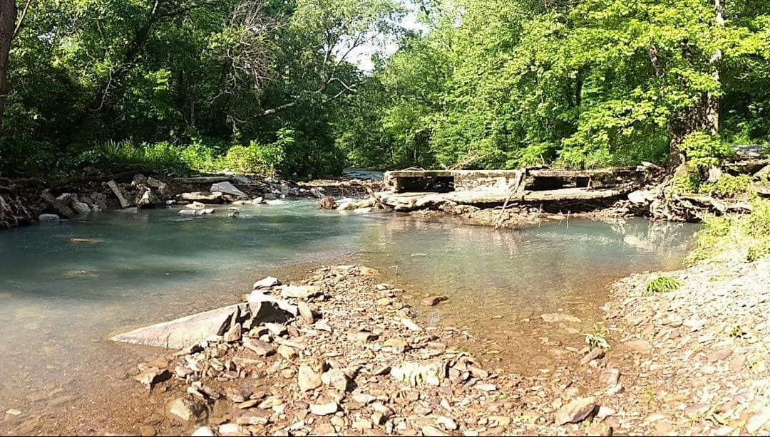 Stream Restoration in Beaver Lake Watershed Helps Water Quality