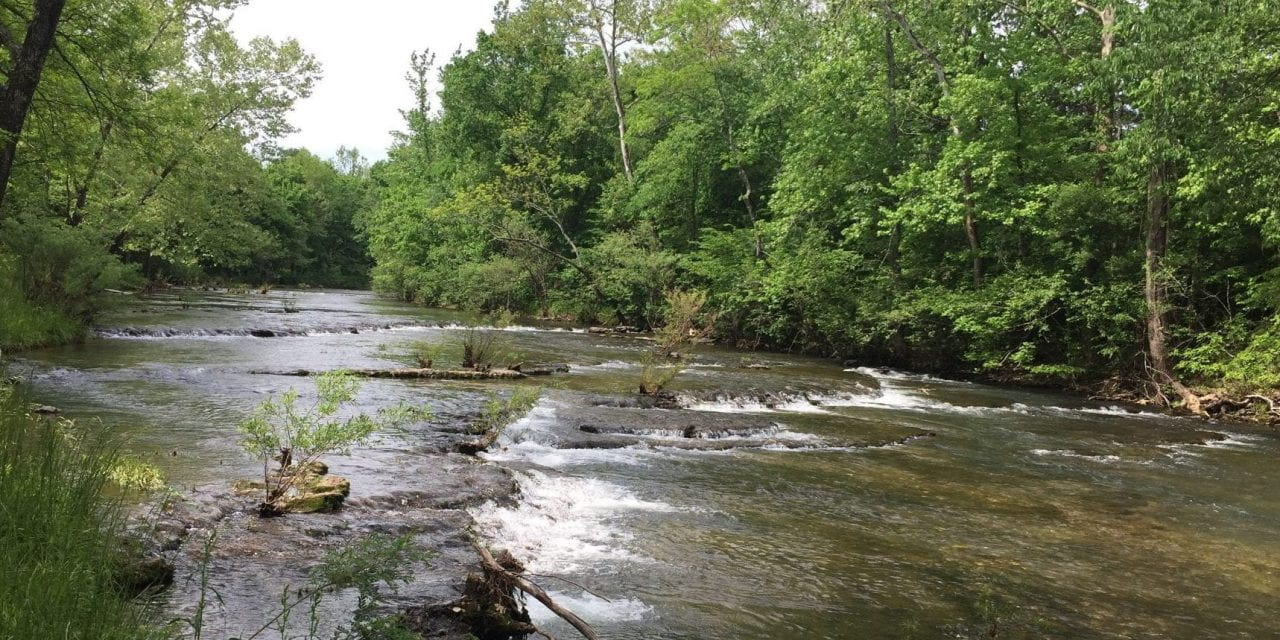 Researchers Characterize Nutrient Sources in the Big Creek, Sub-Watershed of the Buffalo River