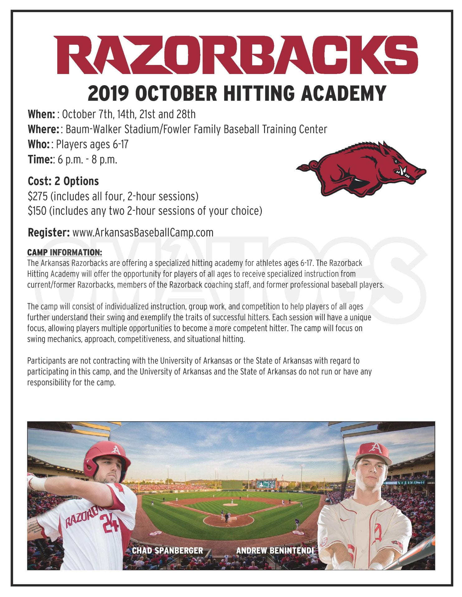 Arkansas Baseball Camps | Swinging for Excellence