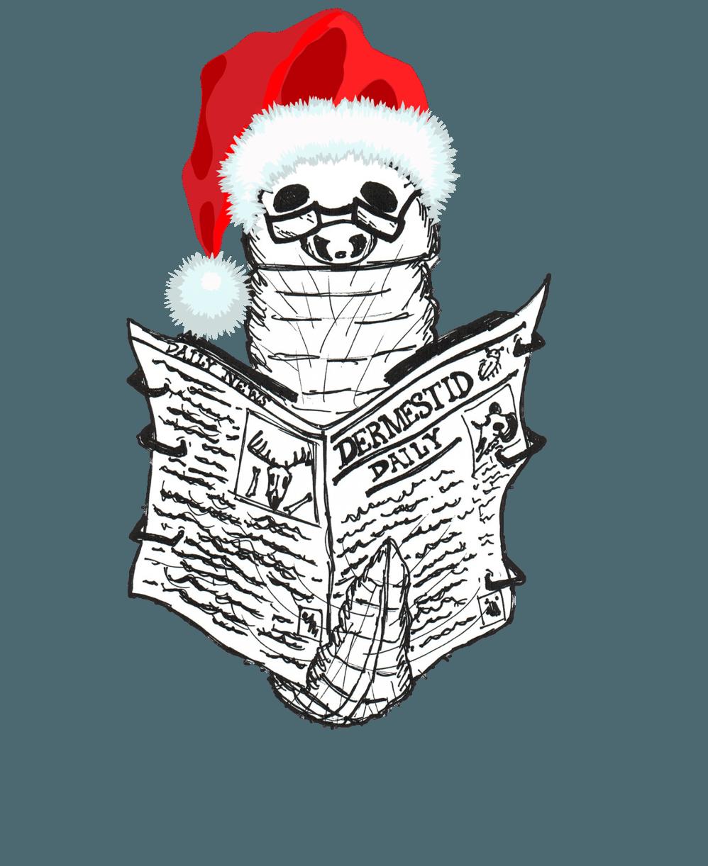 Warm Wishes & New Insight into Dermestid Colony Use