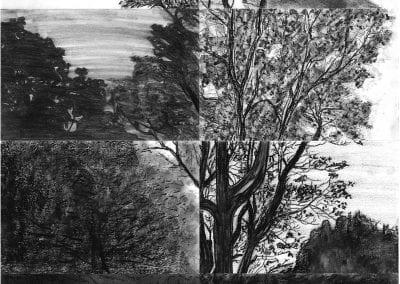 Student_tree_drawings-ycaj8d