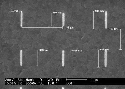 100 nm width metallic nanowire array
