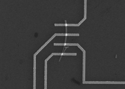 Single silicon nanowire device
