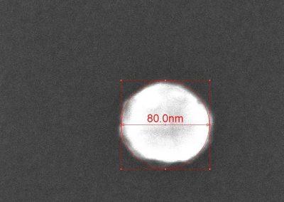80 nm diameter metallic nanodisk