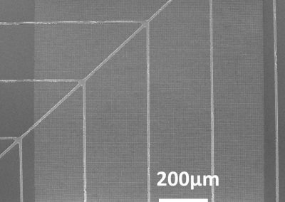 Metallic nanostructures integrated c-Si solar cell