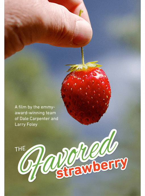 Cover of the DVD of The Favored Strawberry