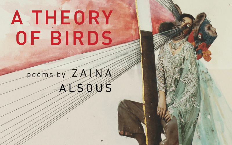 A Theory of Birds Reviewed in The Adroit Journal