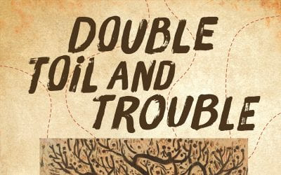 Now Available! Donald Harington's Double Toil and Trouble