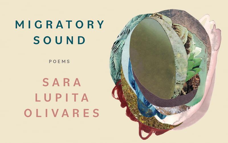 Now Available: Migratory Sound by Sara Lupita Olivares