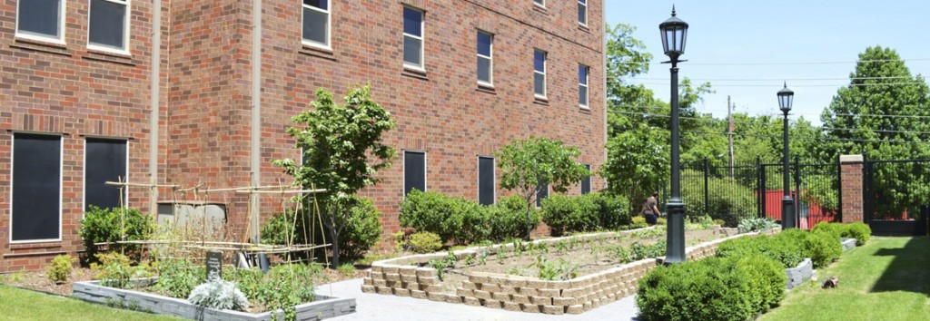 GroGreen and the Campus Community Garden