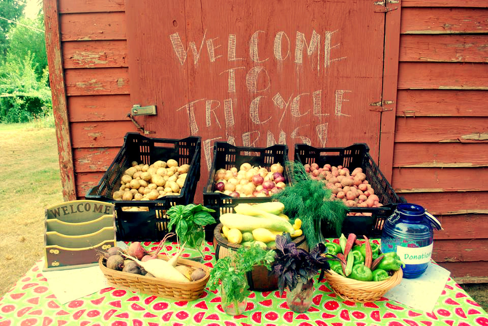 Sustainability in The Community: Tri Cycle Farms