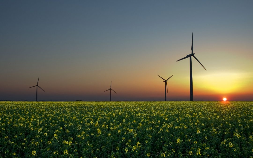 How Much do you Really Know about Wind Energy?