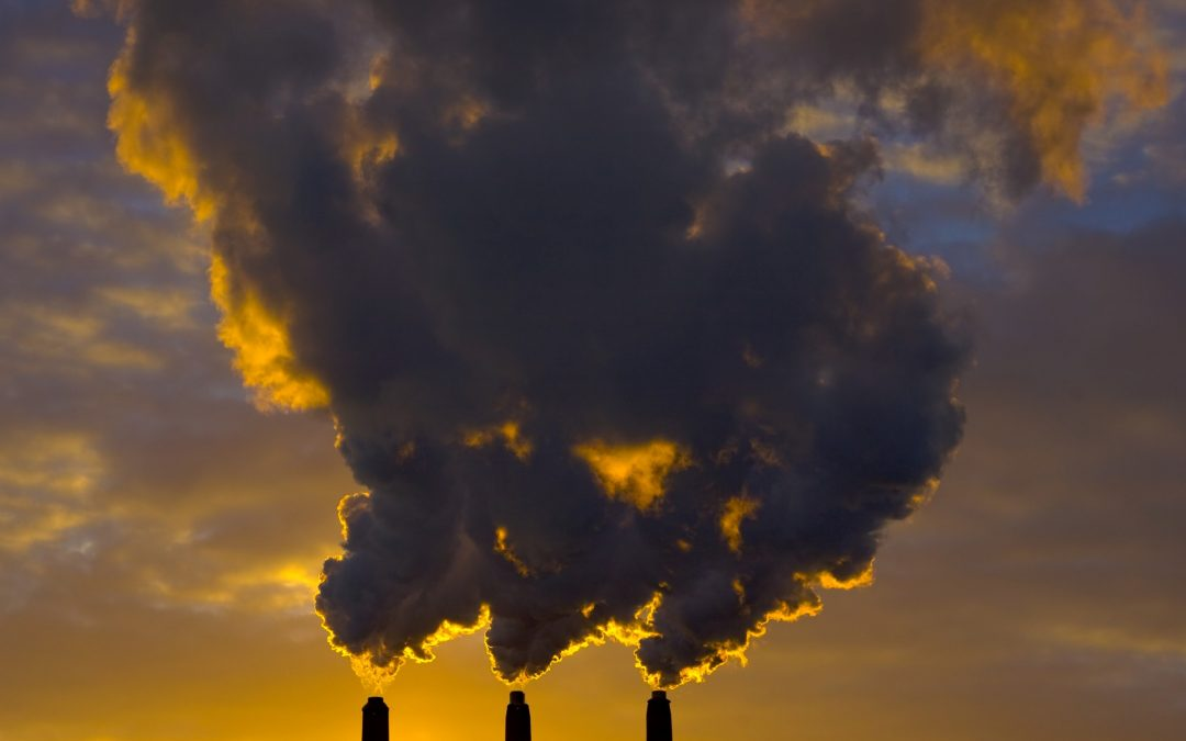Definition: Carbon Tax