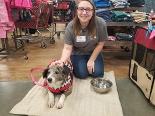 Outreach Coordinator Brianna Warren volunteering at the Fayetteville Animal Shelter.