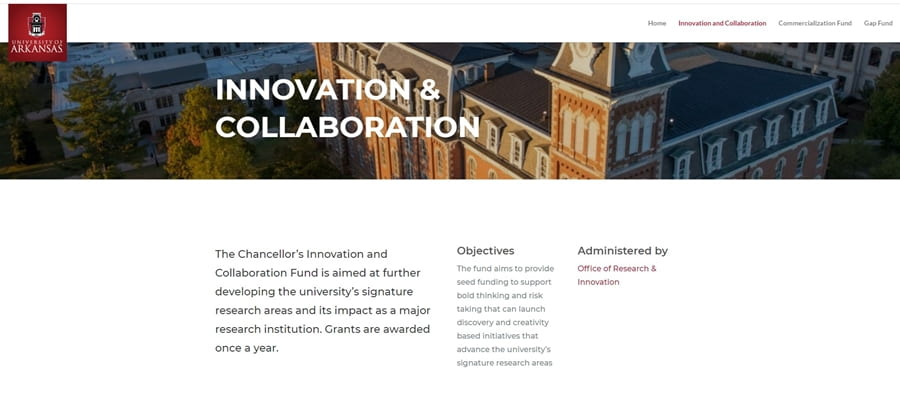 Chancellor's Innovation and Collaboration Fund Awards 10 Faculty Research Projects