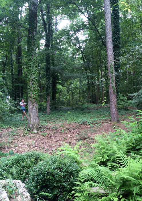 A student in Design Camp sketches in the woods at Garvan Woodland Gardens.