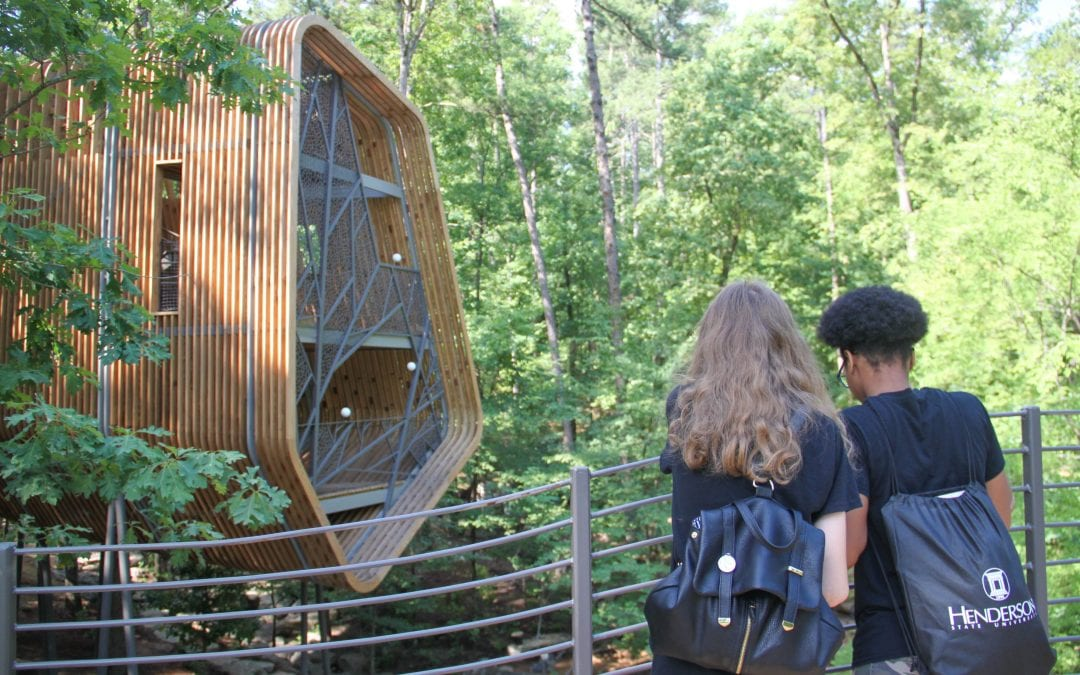 Design Camp students explore landscape design at Garvan Woodland Gardens