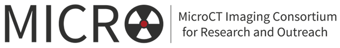 MicroCT Img