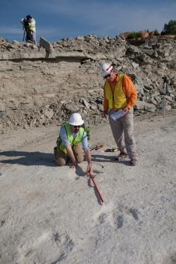 Researchers Steve Boss of Arkansas, standing, and Brian Platt of the University of Kansas