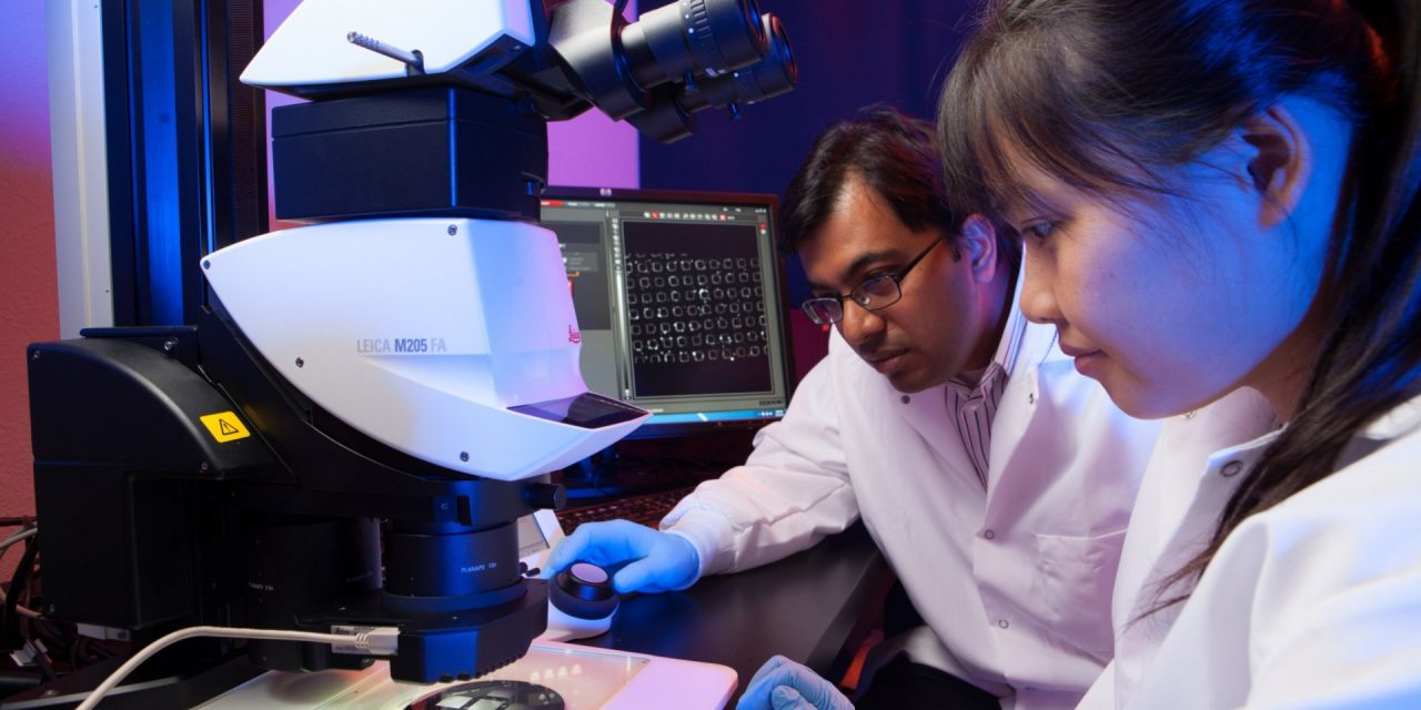 Engineers Receive NSF CAREER Awards for Research to Improve Wireless Devices and Fight Heart Valve Disease