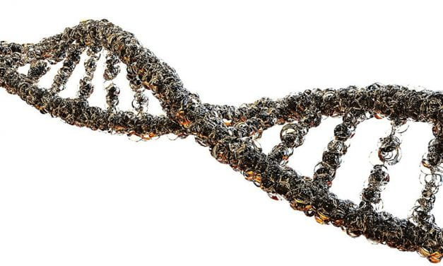 Researchers Create New Tool for Controlling Genes in Methanogens