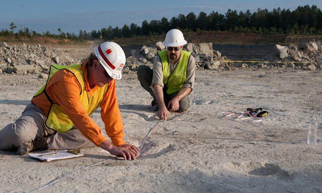Researchers Digitally Preserve Important Arkansas Dinosaur Tracks