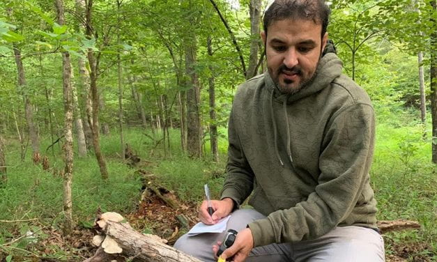Cataloging the Wood-Decay Fungi of Northwest Arkansas