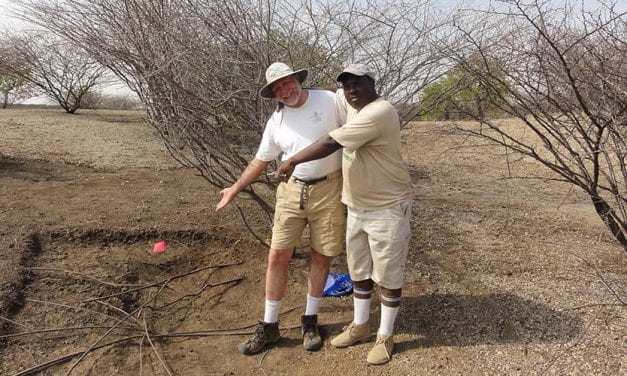 Anthropologist Receives NSF Funding to Explore New Fossil Site in Kenya