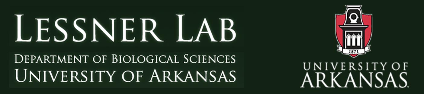Lessner Lab