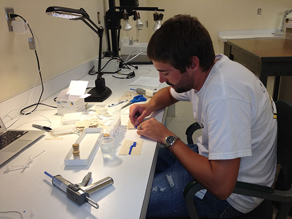 A young man takes painstaking care to make impressions of tiny shrew incisors.