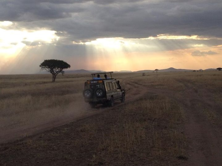 A safari vehicle drives along the Serengeti with a setting sun and acacia tree in the background.