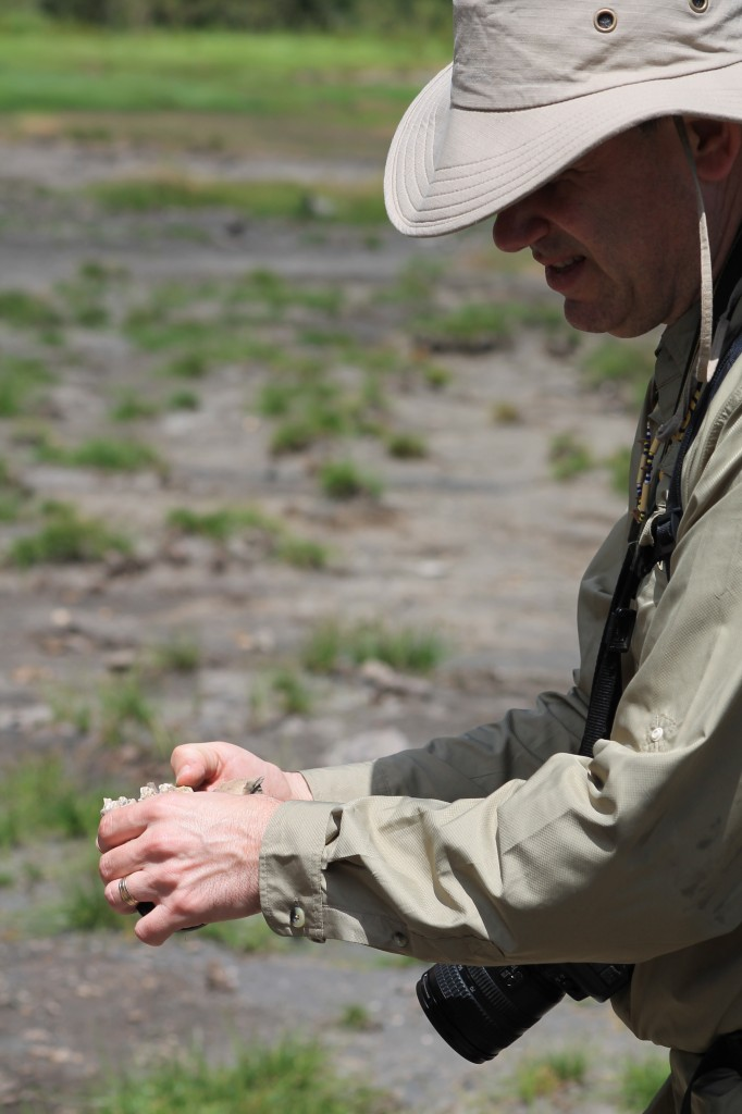 Dr. Peter Ungar holds a fossil found in Empakai Crater. Photo by Holly Hilliard.